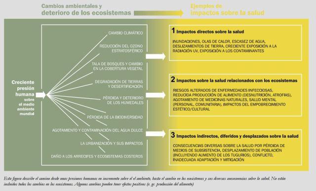 cambio ecossitema salud humana