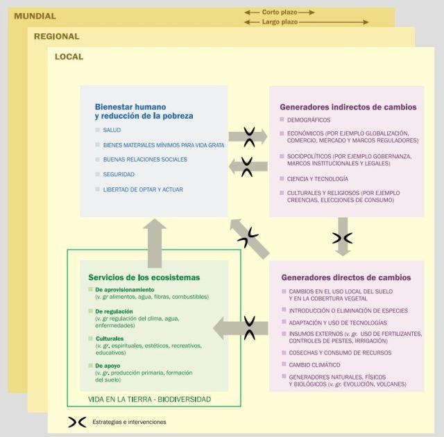 factores afectan ecosistema