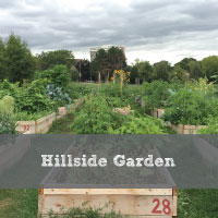 Hillside-Garden