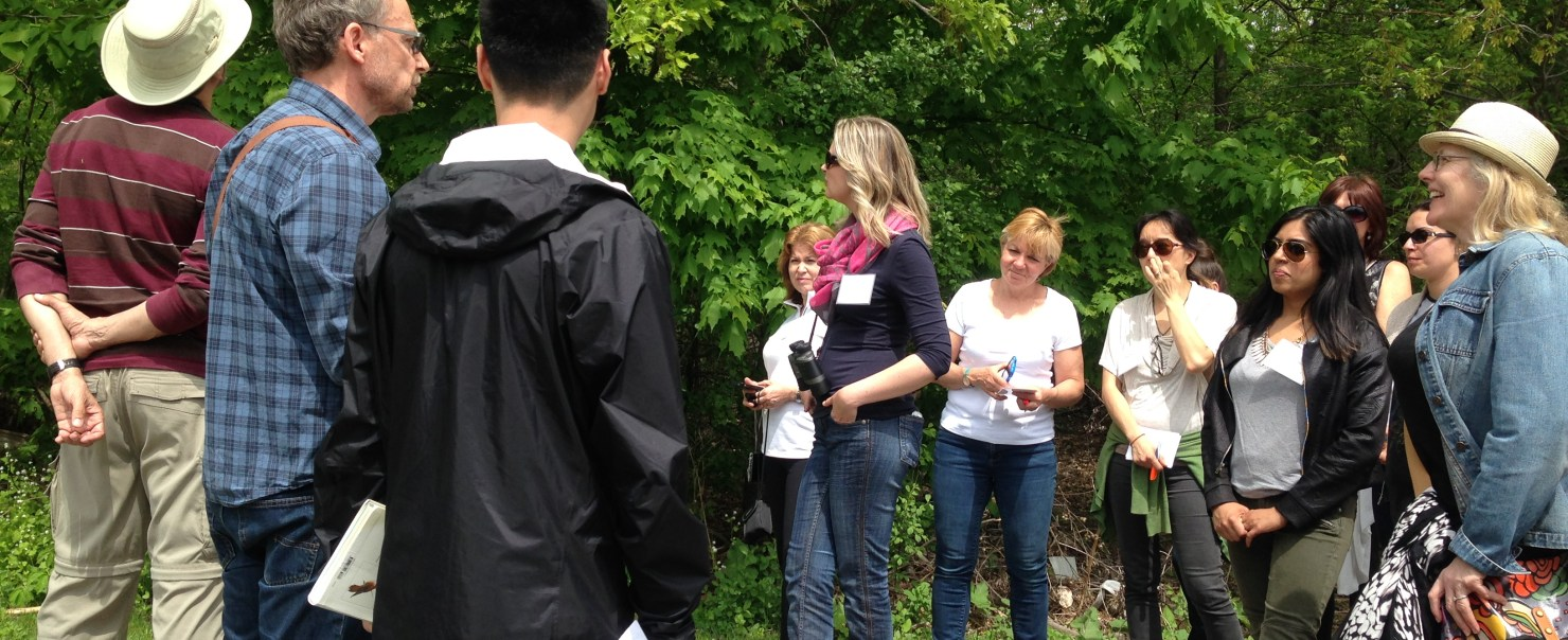 Advanced Teacher Training: Approaches to Educating for Sustainability