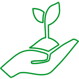 Green Solution Icon