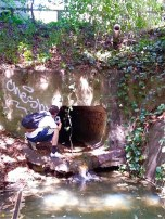 (37.872, -122.255) At the end of our creek excursion, back on campus, we found the mouth of the culvert.