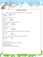 6th Grade Science Worksheets Downloads