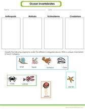 Life Science Worksheets And Games For Kids