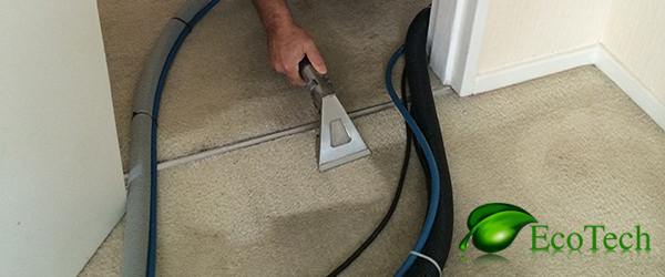 carpet cleaning {city}