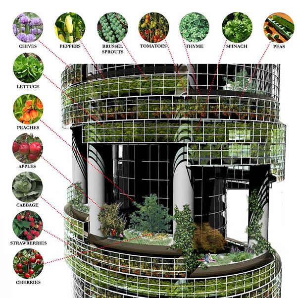 ventajas de la agricultura vertical
