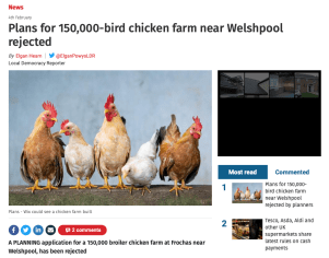 Plans for 150,000-bird chicken farm near Welshpool rejected