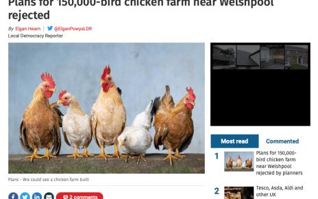 Plans for 150,000-bird chicken farm near Welshpool rejected