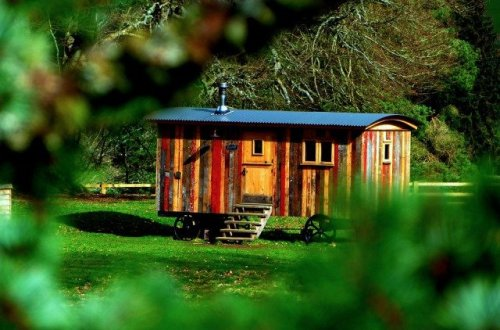 casa de madera en bosque