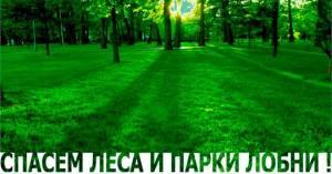 О зелёных насаждениях подмосковного города Лобня