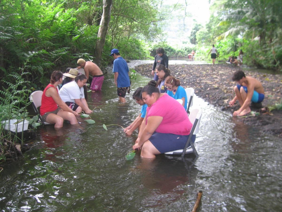 Kukulu Camp 2 EA Ecoversity