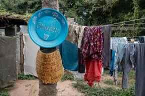 Sadhana_Forest_Auroville_India-79
