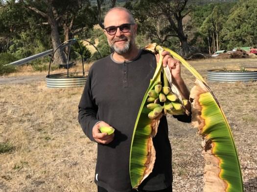 bananas-3-1328