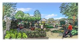 Community garden sketch 1200W