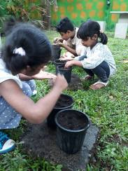 child nature programs
