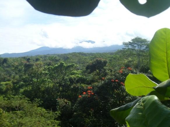 view_Marang