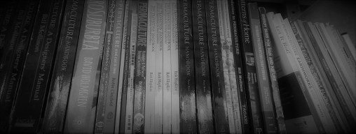 library4 IMAG2549-bw
