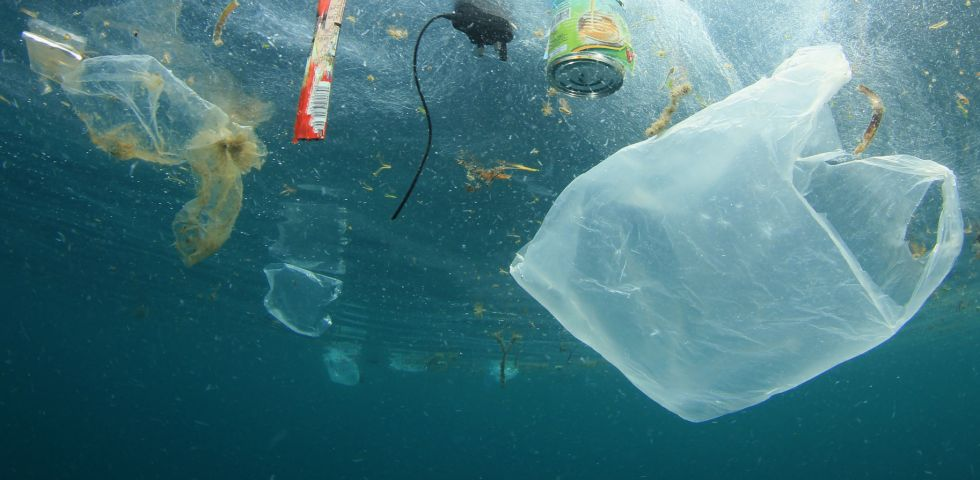 Single Use plastic polluting water bodies