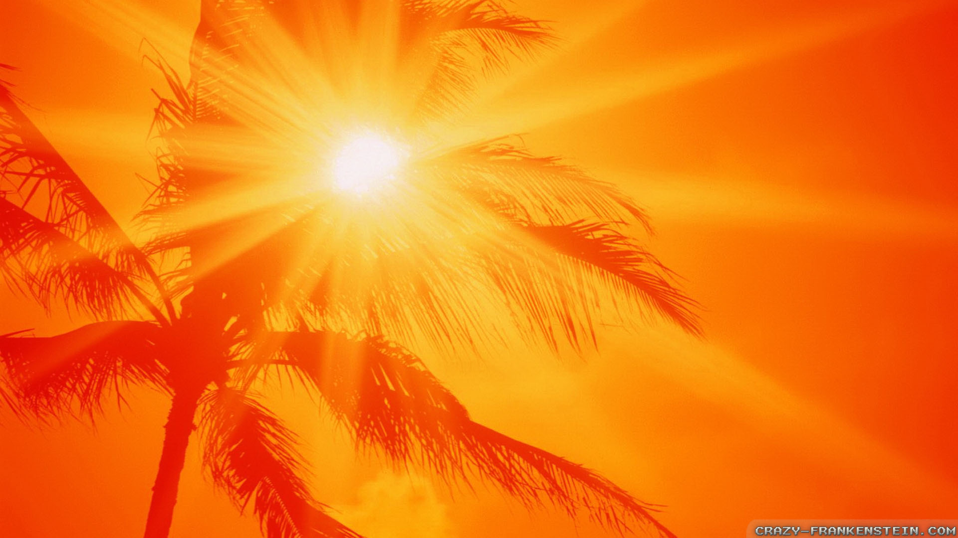 6 Energy Saving Tips For Hot Summers Eco World