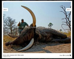 jimmy John big game hunter