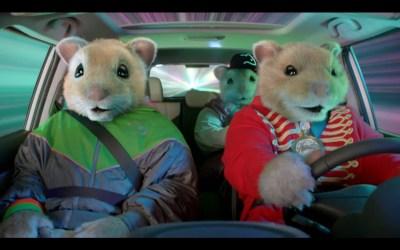 kia hamsters