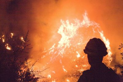 how to help victims of california wildfires