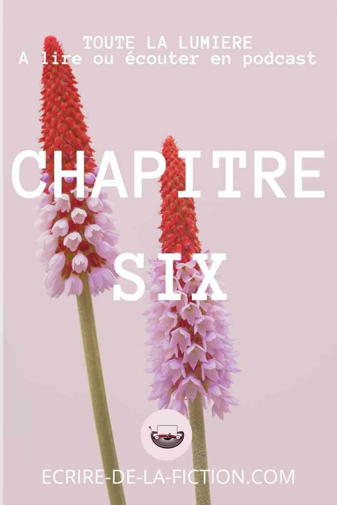 chapitre six fleurs sur fond mauve