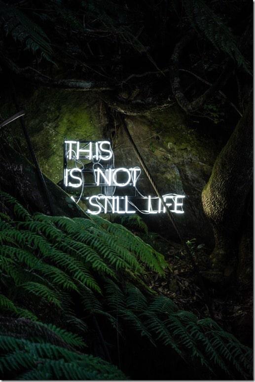 neon-pas-la-vie-ecrire-comme-Stephen-King-photo-Rijan-Hamidovic