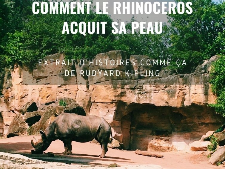 """🎧📖[podcast] """"Comment le Rhinocéros acquit sa peau"""""""