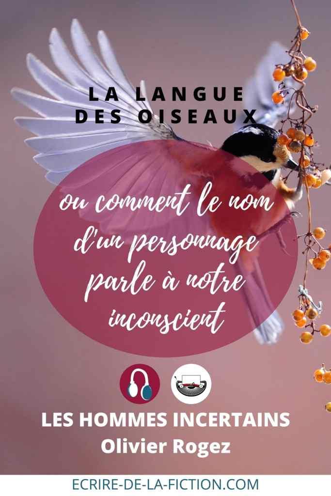 langue-des-oiseaux-olivier-rogez-pin3