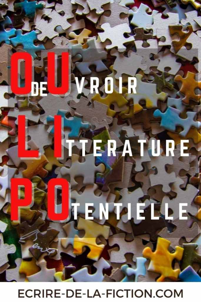 OULIPO-puzzle-epingle