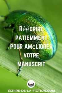 reecriture-coleoptere-vert
