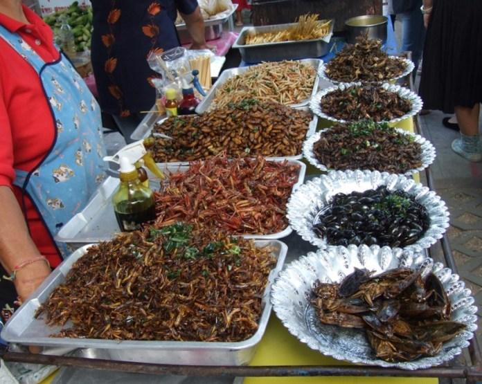 makanan yang wajib dicoba saat berlibur ke bangkok thailand - serangga goreng