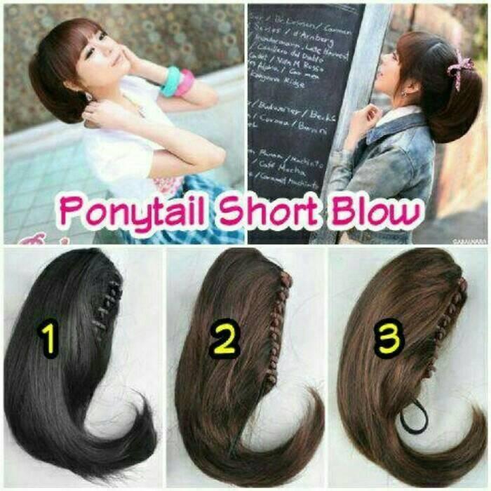 Jual Ponytail Jepit Hair Clip Wig Kab Demak Sanggul Modern