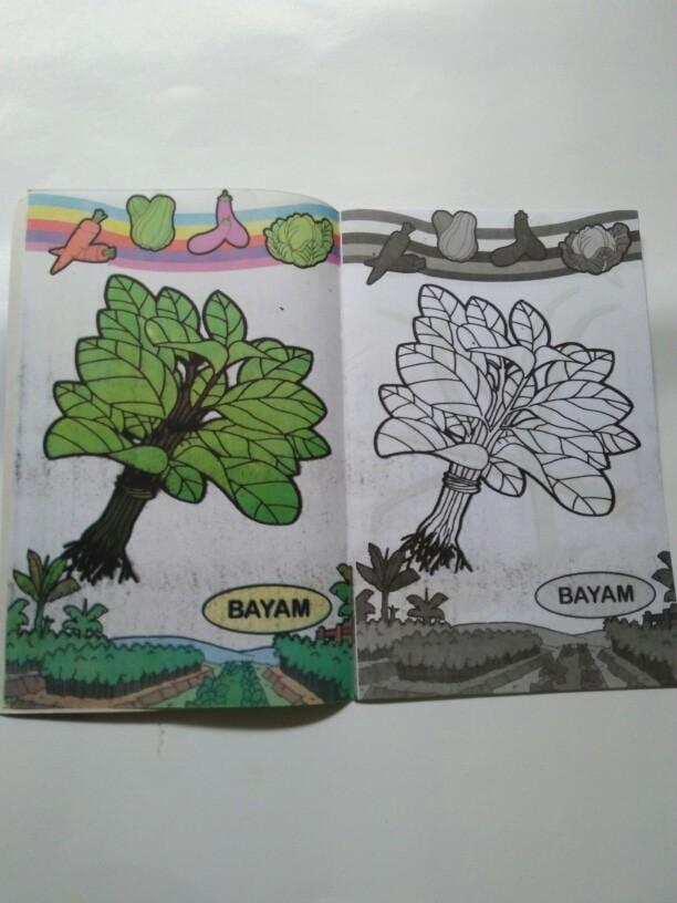 Contoh Gambar Mewarnai Gambar Sayur Bayam Kataucap