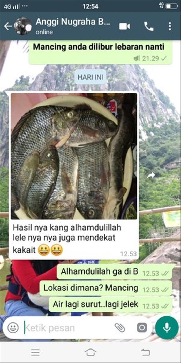 Jual Essen Ikan Nila Umpan Lumut Terlaris Kota Bogor Distro Airin Rahmayani Tokopedia