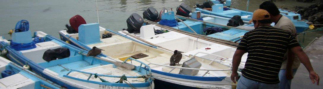 Barcos de pescadores en Puerto Ayora.
