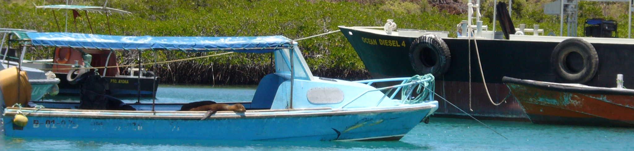 Barco en Galápagos.