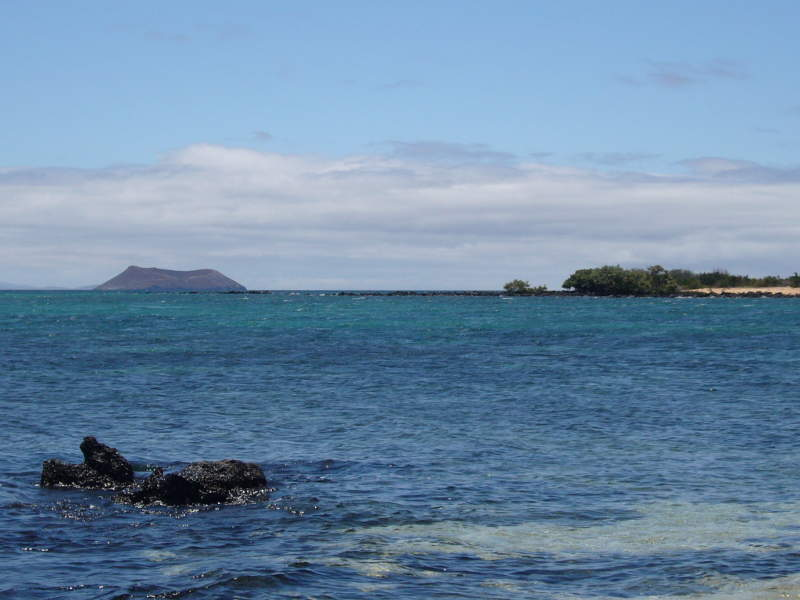 Vista desde Las Bachas hacia la isla Daphne Mayor.