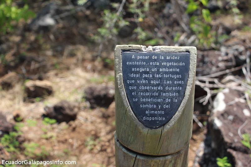 Información sobre los arboles y plantas en la Galapaguera.