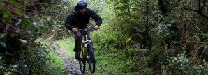 MTB in Ecuador's greenforest
