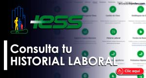 historial-laboral-iess-ecuador-seguro