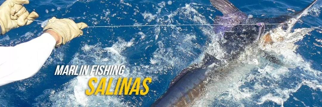 Marlin Fishing Salinas