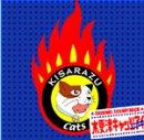 木更津キャッツアイ -日本シリーズ- オリジナルサウンドトラック