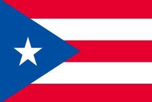 プエルトリコ 国旗 [ ミニフラッグ ポール 吸盤付き 高級テトロン製 ]