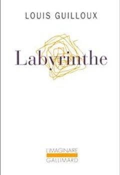 Livres Couvertures de Labyrinthe