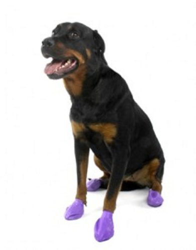 Pawz Waterproof Dog Boots, Set of 12