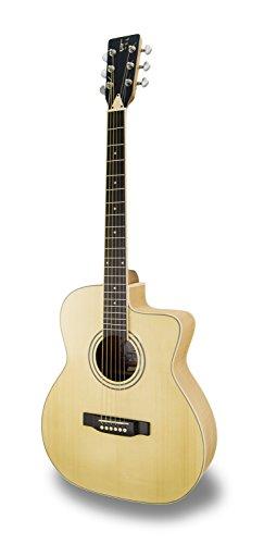 APC Instruments GA200 MPL CW Akustikgitarre