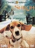 ビーグル犬 シャイロ 特別版