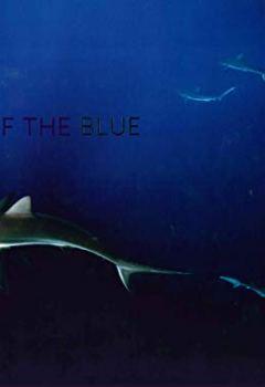 Livres Couvertures de Call of the Blue